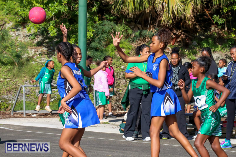 Netball-Bermuda-January-17-2015-6