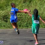 Netball Bermuda, January 17 2015-60