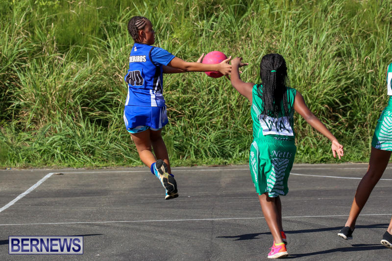 Netball-Bermuda-January-17-2015-60