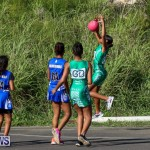 Netball Bermuda, January 17 2015-61