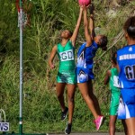Netball Bermuda, January 17 2015-62