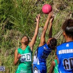 Netball Bermuda, January 17 2015-63