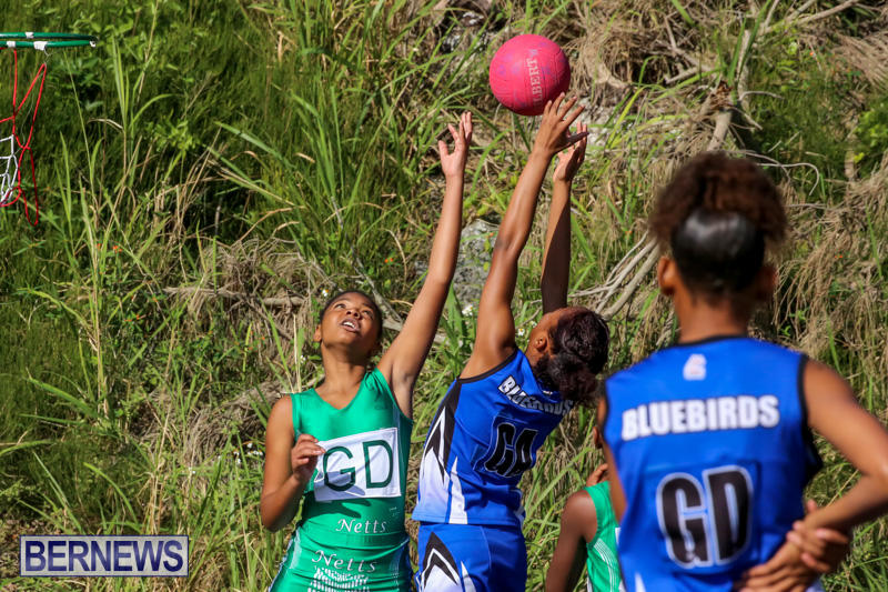 Netball-Bermuda-January-17-2015-63