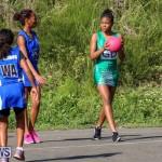 Netball Bermuda, January 17 2015-64