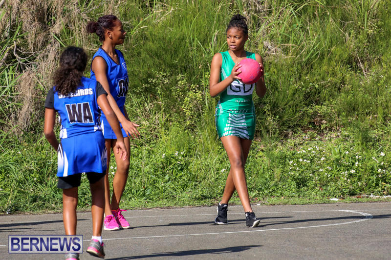 Netball-Bermuda-January-17-2015-64