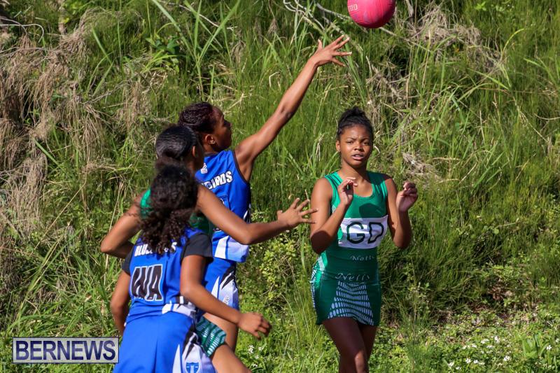 Netball-Bermuda-January-17-2015-65