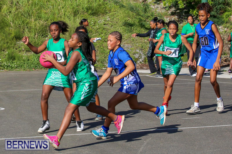 Netball-Bermuda-January-17-2015-66