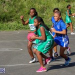 Netball Bermuda, January 17 2015-67