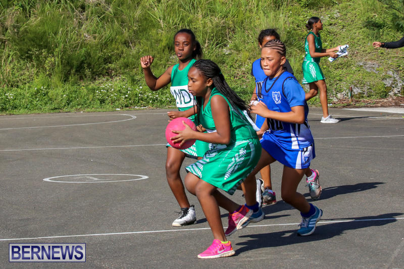 Netball-Bermuda-January-17-2015-67