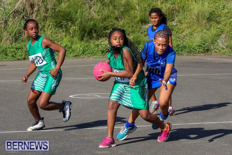 Netball-Bermuda-January-17-2015-68