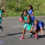 Netball Bermuda, January 17 2015-69
