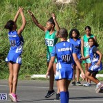Netball Bermuda, January 17 2015-7