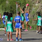 Netball Bermuda, January 17 2015-71