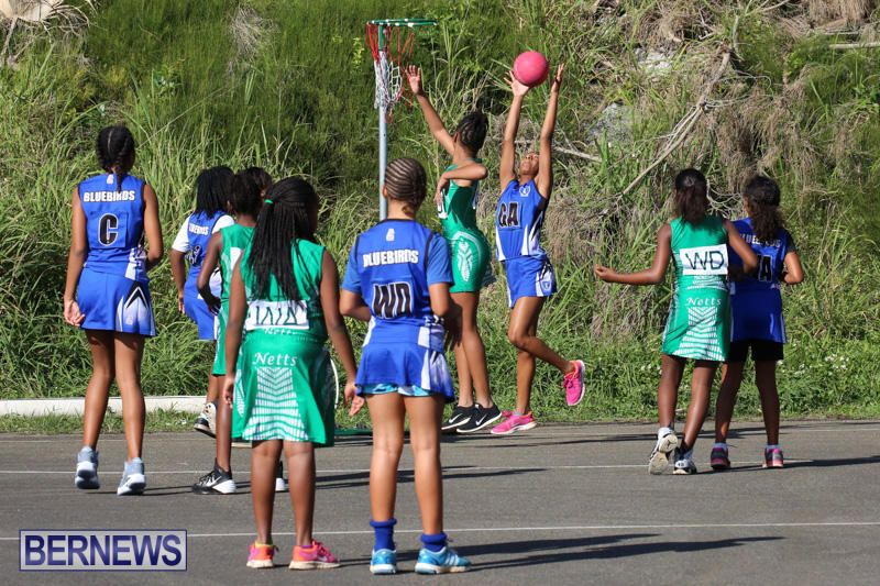 Netball-Bermuda-January-17-2015-71