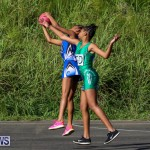 Netball Bermuda, January 17 2015-72