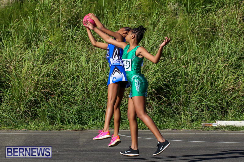 Netball-Bermuda-January-17-2015-72