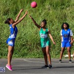 Netball Bermuda, January 17 2015-73