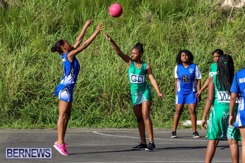 Netball-Bermuda-January-17-2015-73