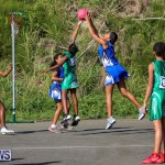 Netball Bermuda, January 17 2015-74
