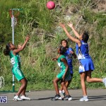 Netball Bermuda, January 17 2015-75