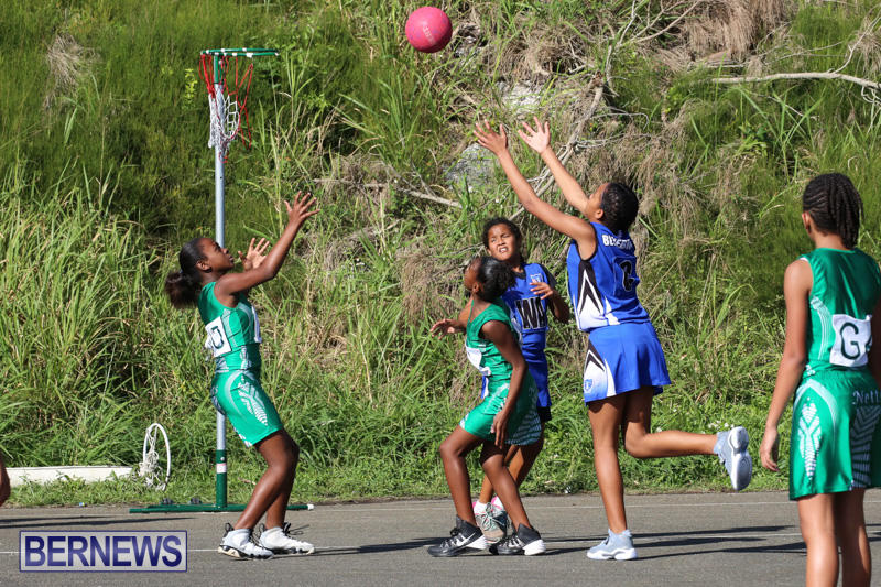 Netball-Bermuda-January-17-2015-75