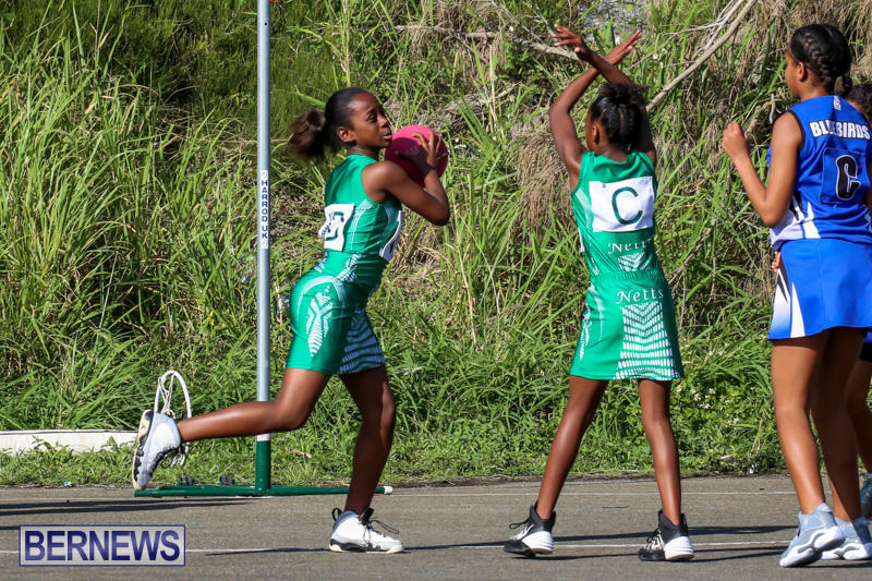 Netball-Bermuda-January-17-2015-76