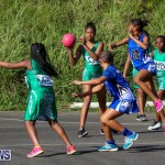 Netball Bermuda, January 17 2015-77