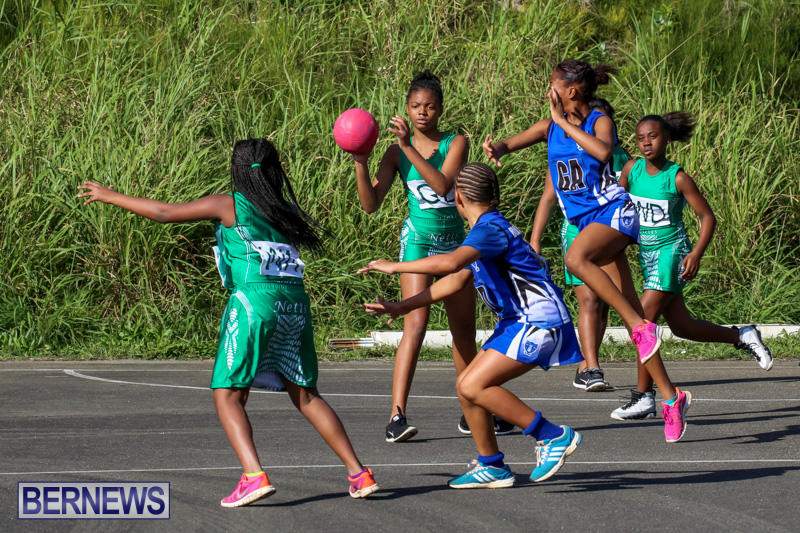 Netball-Bermuda-January-17-2015-77
