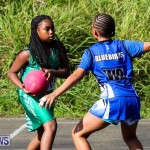 Netball Bermuda, January 17 2015-78