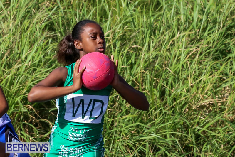 Netball-Bermuda-January-17-2015-79