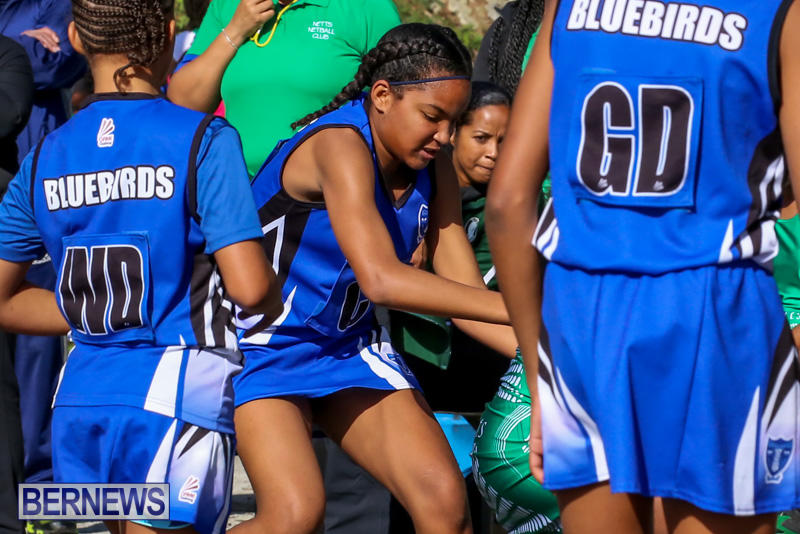 Netball-Bermuda-January-17-2015-80