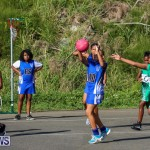Netball Bermuda, January 17 2015-81