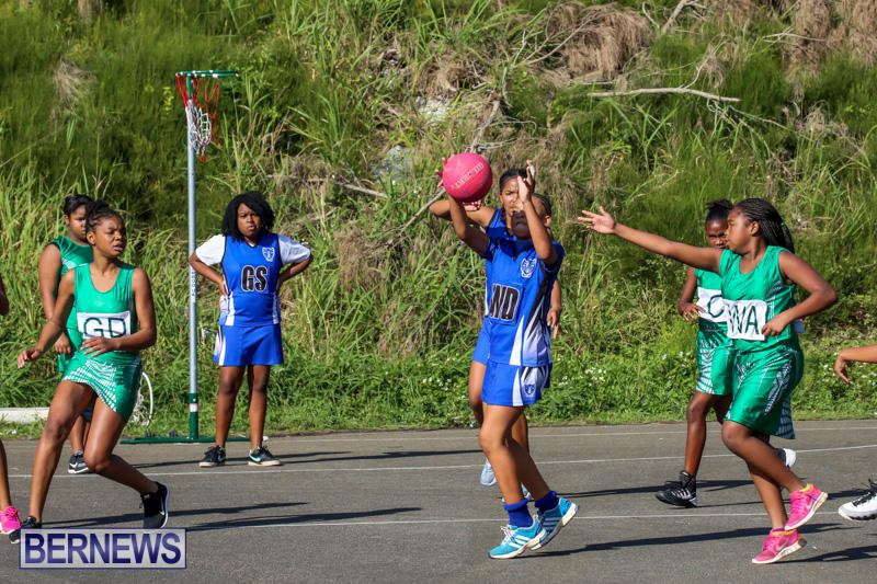 Netball-Bermuda-January-17-2015-81