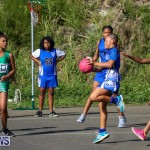 Netball Bermuda, January 17 2015-82