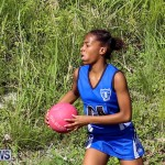 Netball Bermuda, January 17 2015-83
