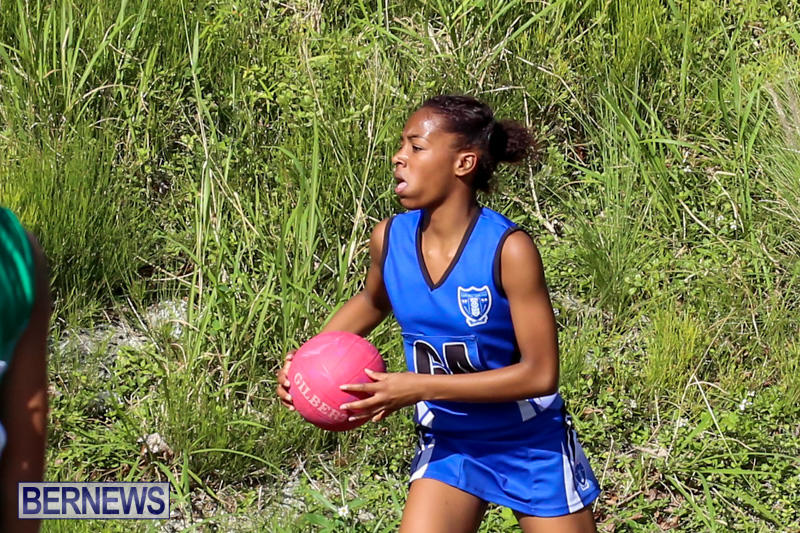 Netball-Bermuda-January-17-2015-83