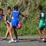 Netball Bermuda, January 17 2015-84