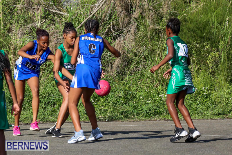 Netball-Bermuda-January-17-2015-84