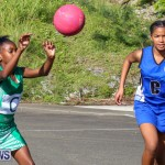 Netball Bermuda, January 17 2015-9