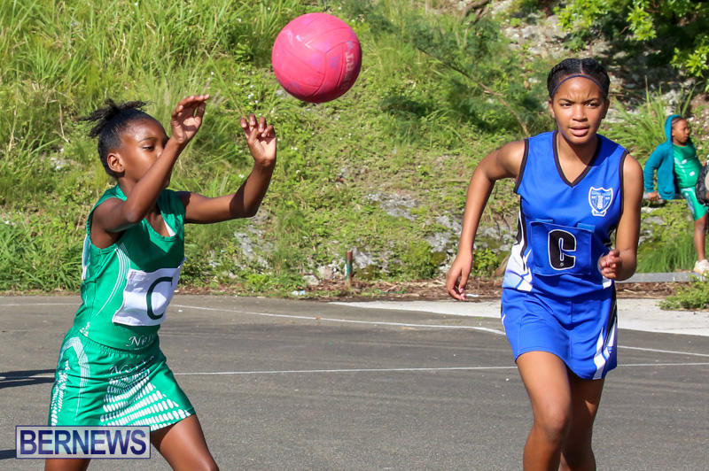 Netball-Bermuda-January-17-2015-9