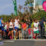 Race Weekend 10K Bermuda, January 17 2015-117