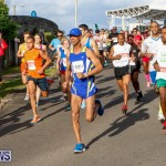 Race Weekend 10K Bermuda, January 17 2015-12