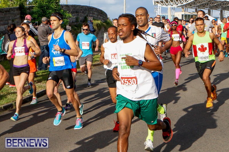Race-Weekend-10K-Bermuda-January-17-2015-13