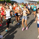 Race Weekend 10K Bermuda, January 17 2015-25