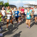 Race Weekend 10K Bermuda, January 17 2015-27
