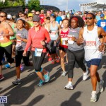Race Weekend 10K Bermuda, January 17 2015-39