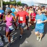 Race Weekend 10K Bermuda, January 17 2015-71