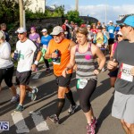 Race Weekend 10K Bermuda, January 17 2015-94