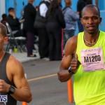 Race Weekend Marathon Start Bermuda, January 18 2015-9