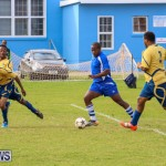 St David's vs Young Men Social Club Football Bermuda, January 11 2015-32